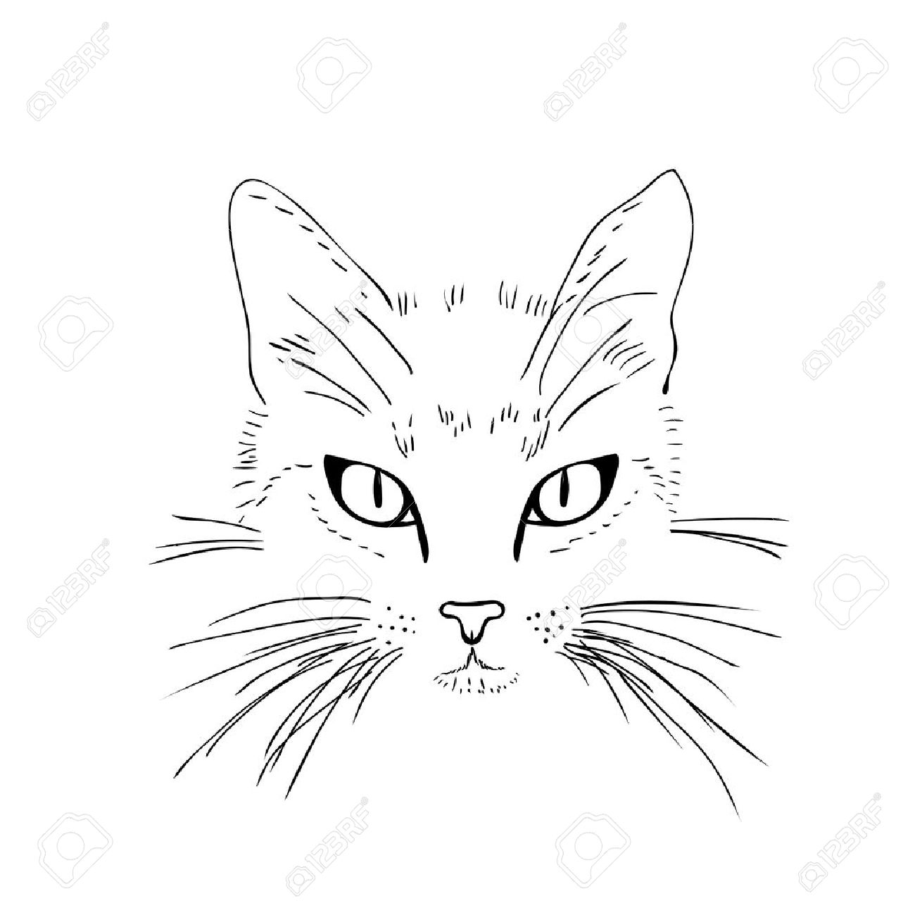 1300x1300 Cat Face. Black And White Sketch. Vector Illustration Royalty Free