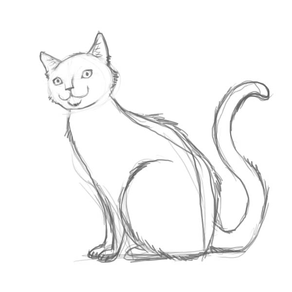 600x600 How To Draw The Cat With The Pencil Step By Step