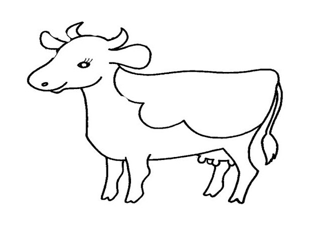 650x478 Cow Template