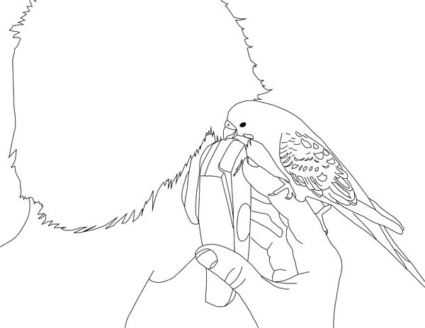 600x464 Cell Phone Coloring Pages Cell Phone Coloring Pages Cell Phone