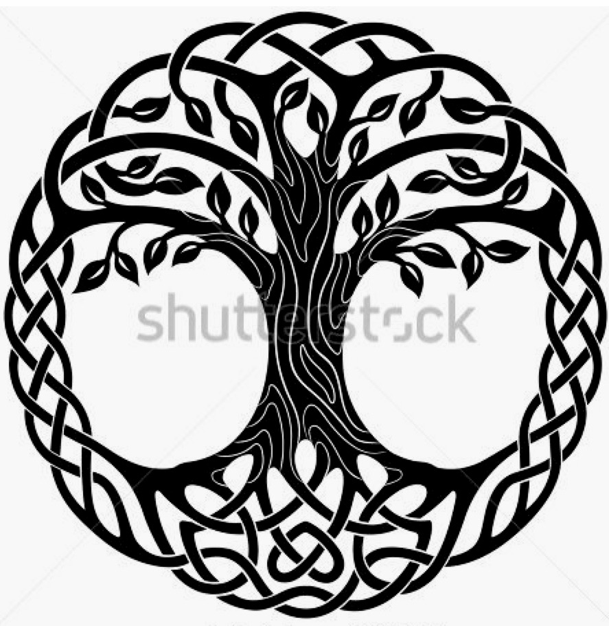Celtic Tree Of Life Drawing At Getdrawings Free For Personal