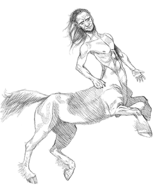 1024x1240 Centaur Sketch By Pillowpet1997