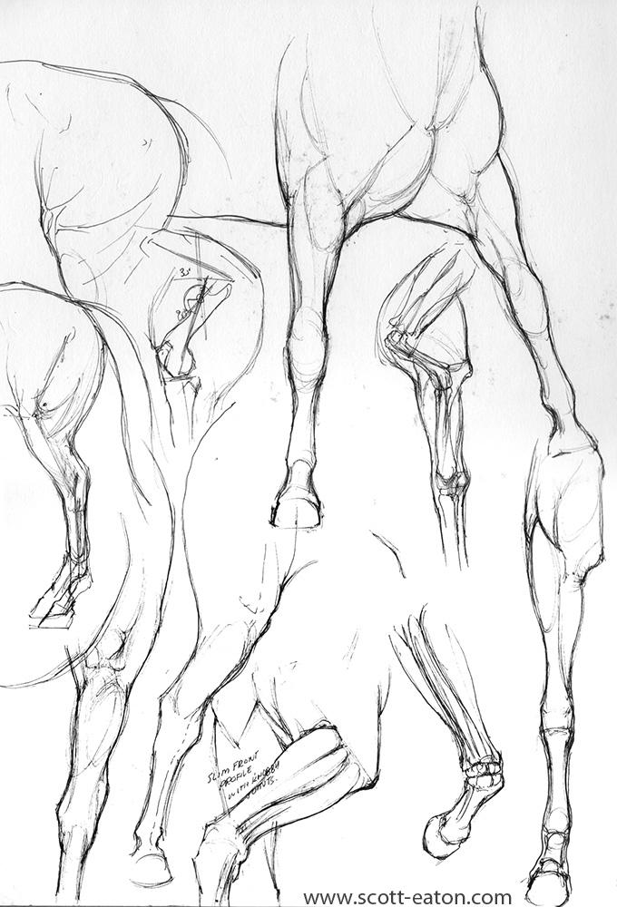 680x1000 Centaur Sketches Gallery Scott Eaton