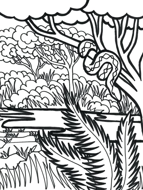 600x796 Canadian Province British Columbia Coloring Page Awesome Flag