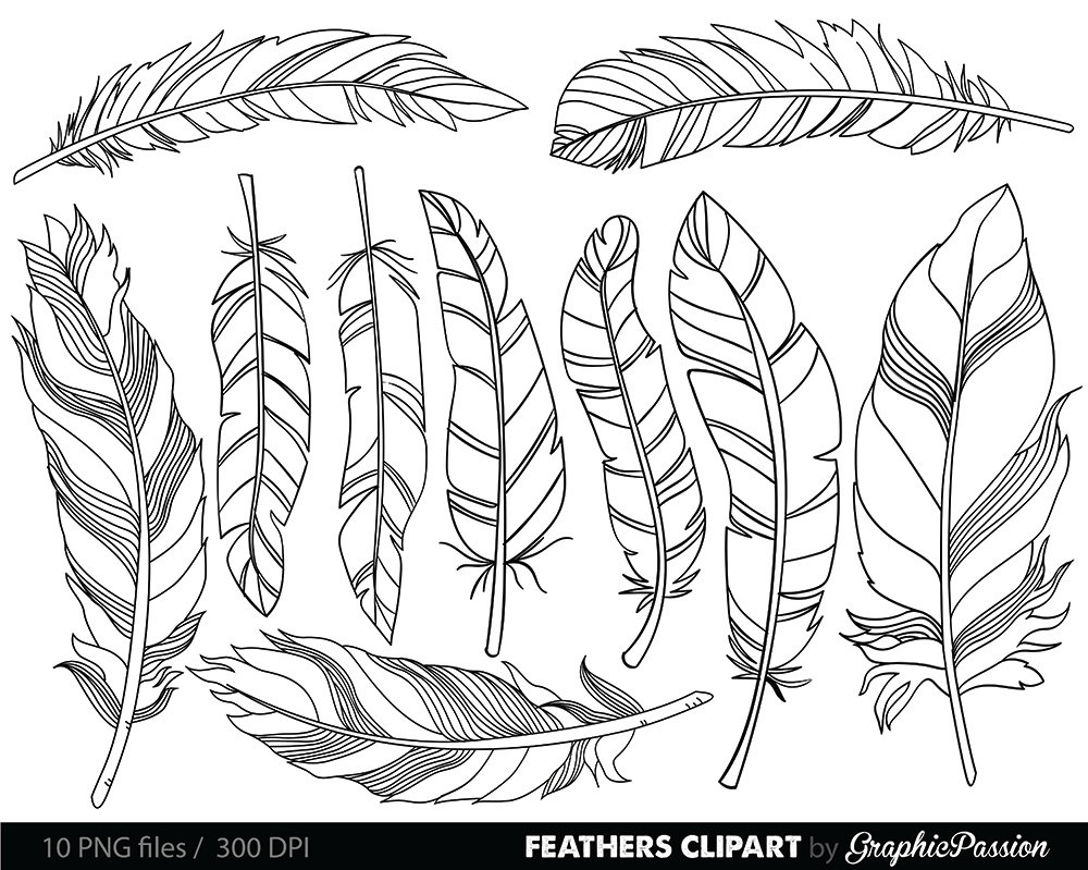 1000x799 Feather Clipart Clip Art Vectors Tribal Feather Drawings Clip