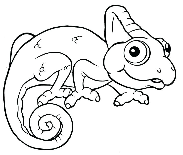 736x624 Chameleon Coloring The Mixed Up Chameleon Coloring Page Lizard