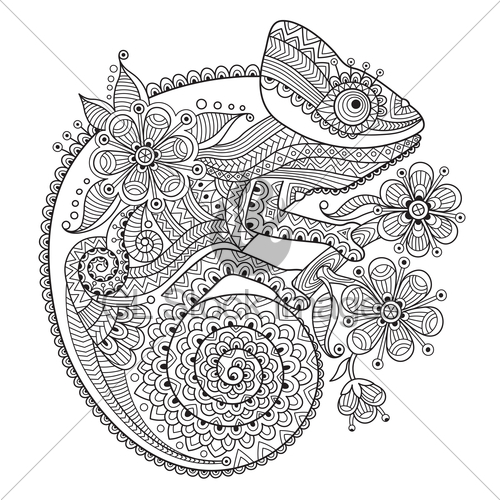 Chameleon Line Drawing
