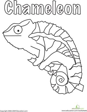 301x385 A Color Of His Own Coloring Page Color The Chameleon