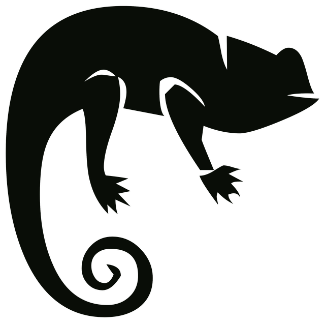 640x635 Free Photo Chameleon Outline Silhouette Animal Nature Drawing