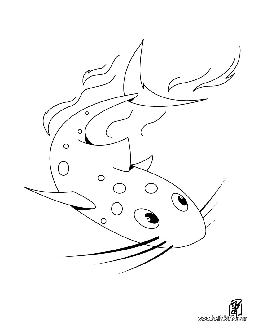 820x1060 Catfish Animal Coloring Pages Catfish Clipart Clip Art Images