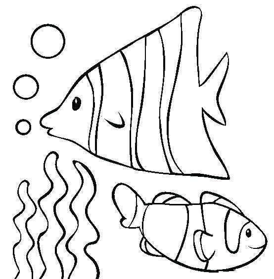 554x565 Catfish Coloring Page Catfish Drawing Library Flathead Catfish