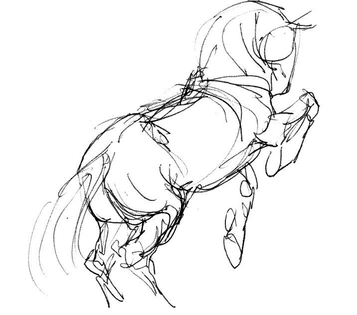 716x632 Horse Sketch Visual Inspiration Sappi Grant