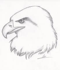 207x243 Realistic Animal Drawings
