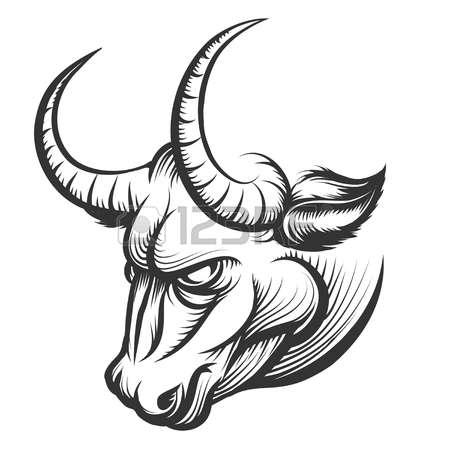 450x450 Drawn Bulls Raging Bull