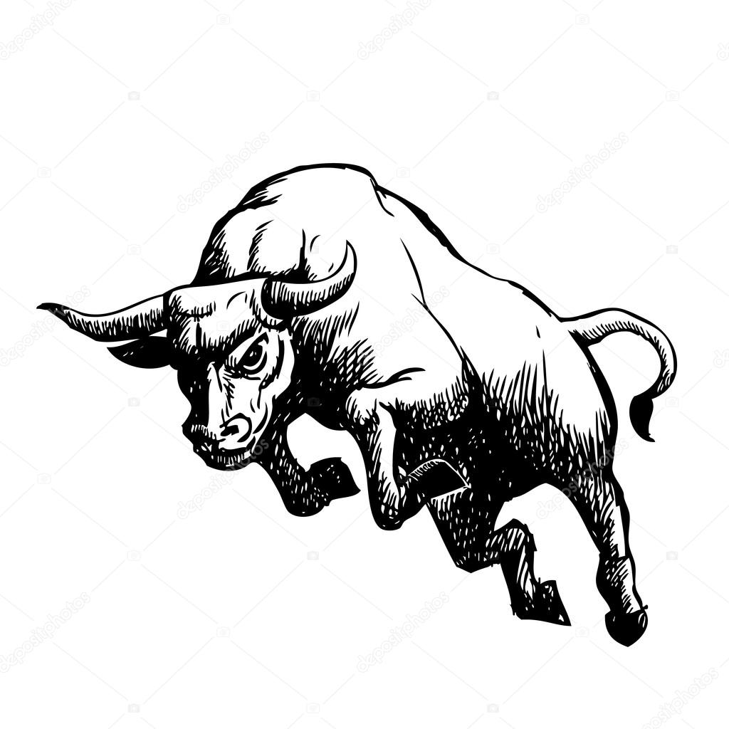 1024x1024 Freehand Sketch Illustration Of Charging Bull Stock Vector