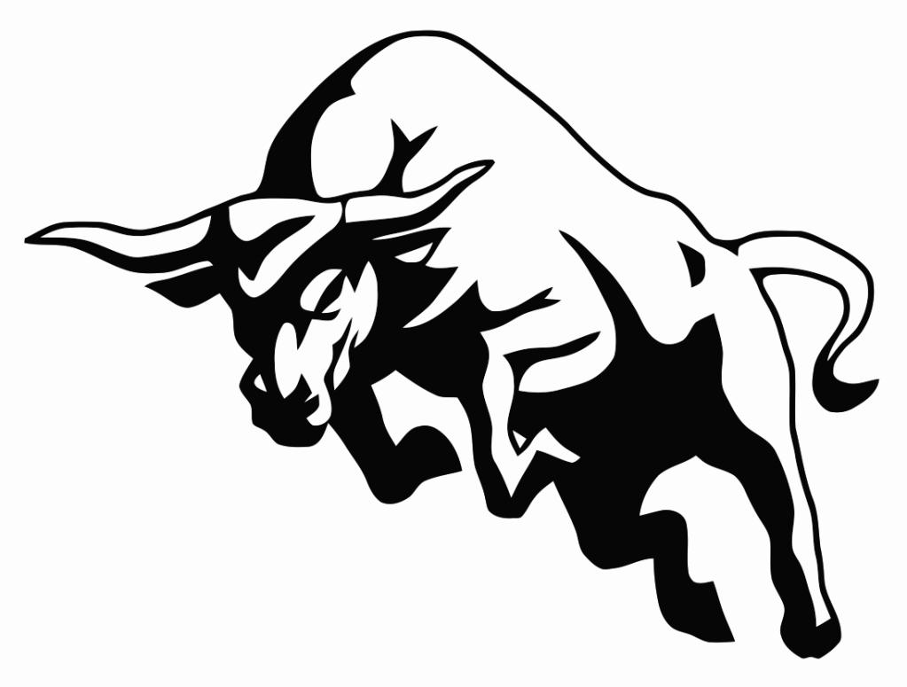 1023x775 Bull Charge