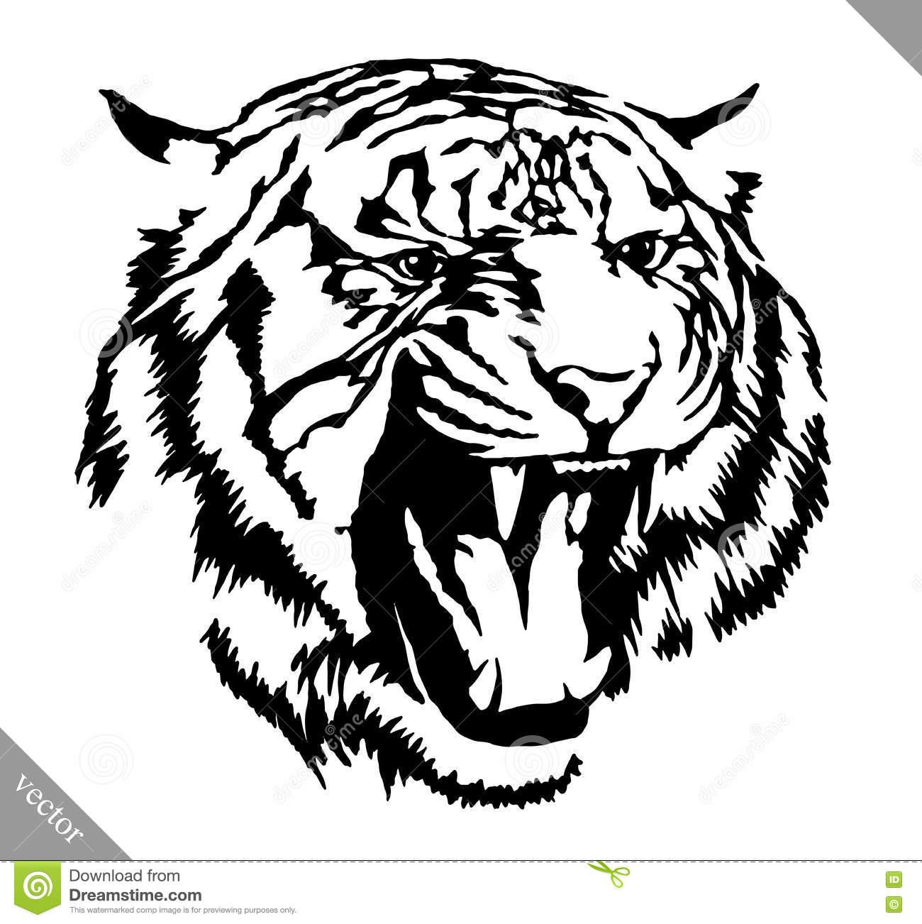 1300x1302 Drawn White Tiger Cheetah