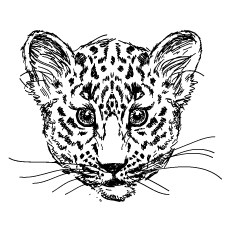 230x230 Top 25 Free Printable Leopard Coloring Pages Online