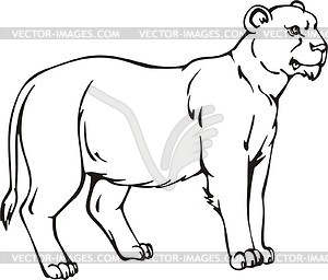 300x256 Lioness Vector Clipart. Lioness Coloring Pages. Big Cat Cartoon