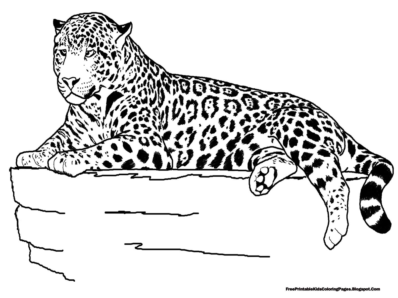 Cheetah Running Drawing At GetDrawings