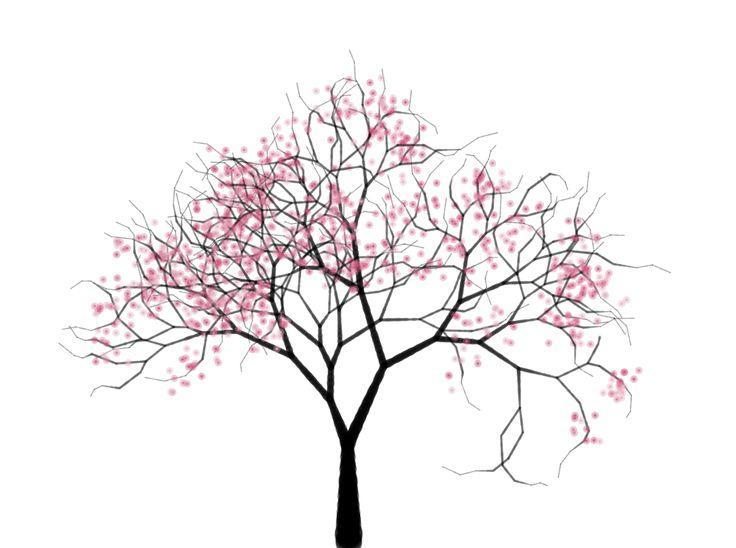 736x548 Drawn Ume Blossom Line Drawing