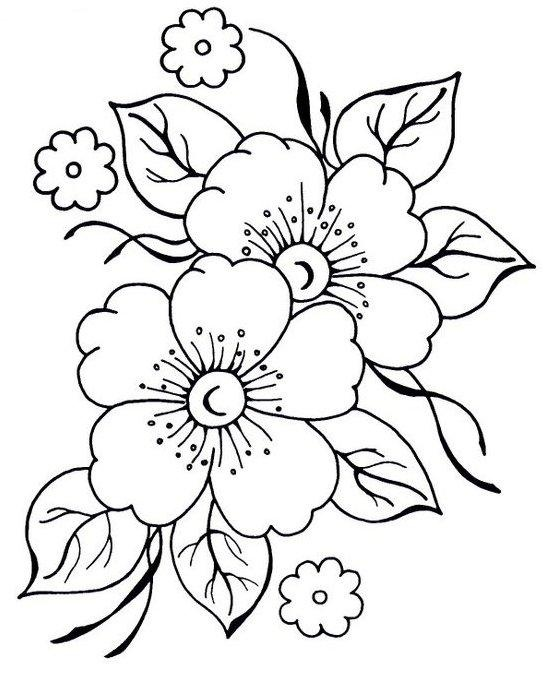 550x681 Apple Blossom Clipart