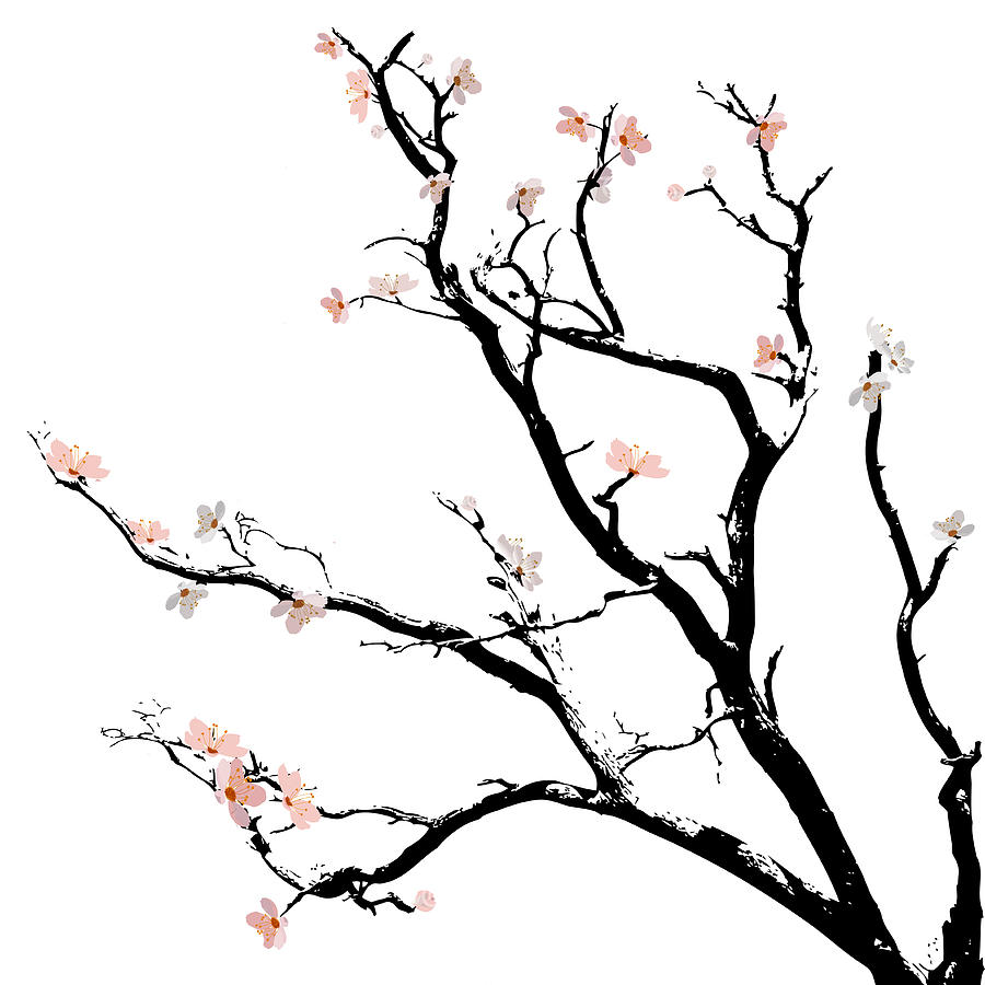 900x900 Cherry Blossoms Tree Digital Art By Gina Dsgn