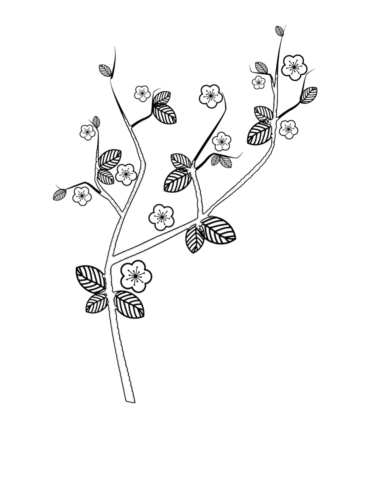 1275x1650 Cherry Blossom Coloring Pages