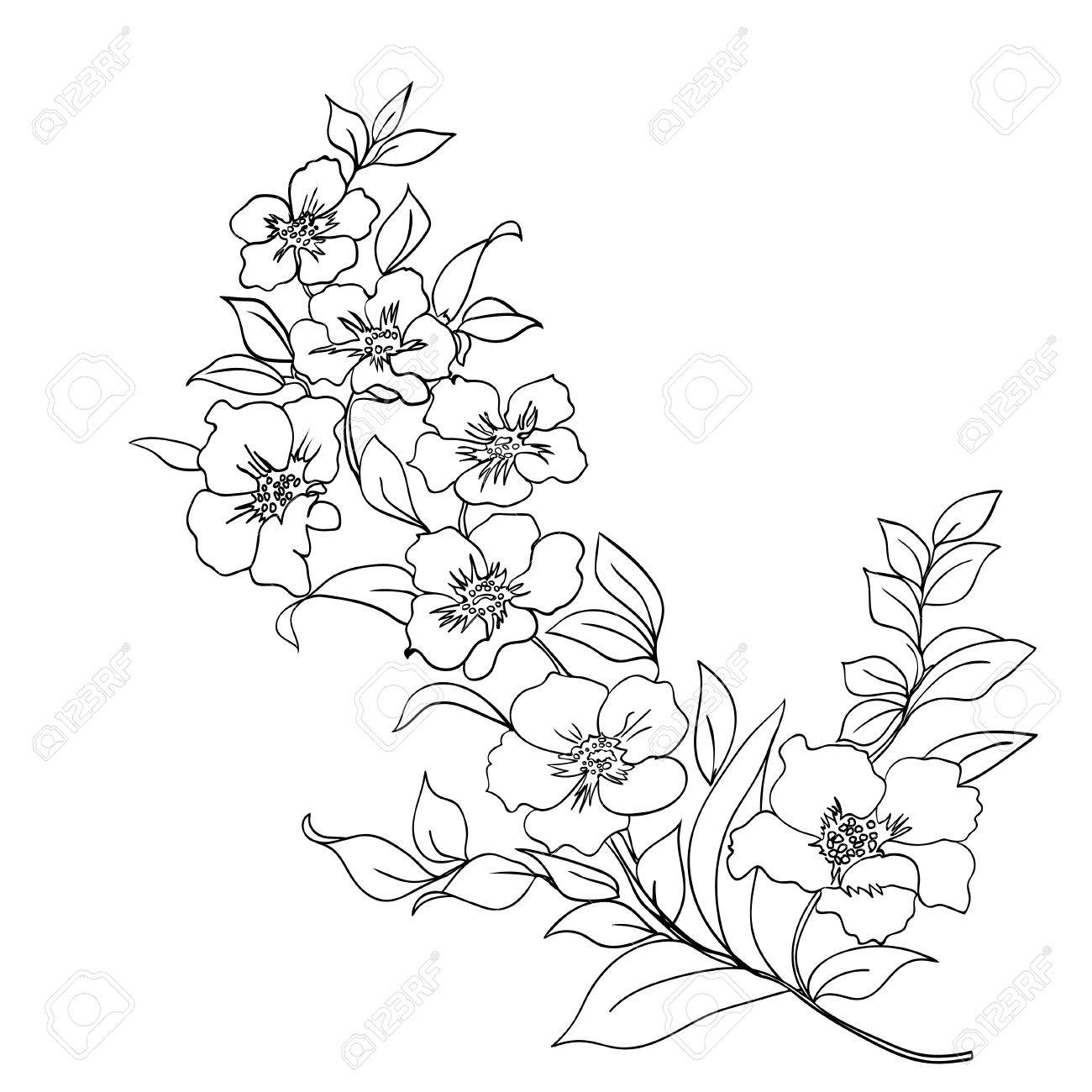 1300x1300 10,952 Cherry Sketch Cliparts, Stock Vector And Royalty Free