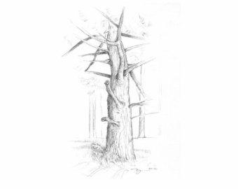 340x270 Tree Pencil Drawing Etsy