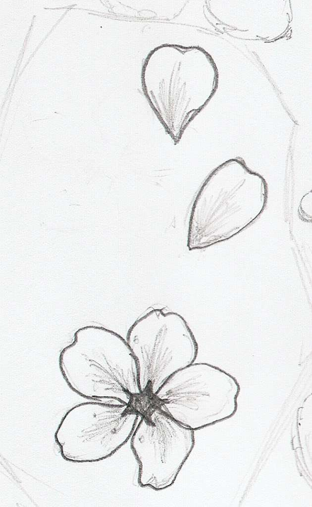 630x1024 Twig Sakura Blossoms Vector Illustration Stock Vector 38621152