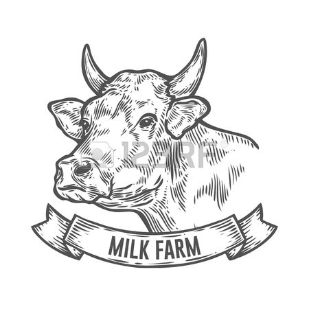 450x450 Head Of A Bull With Large Horns Symmetrical, Sketch Vector