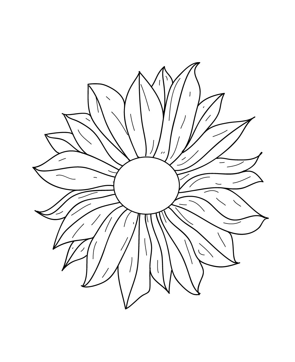 980x1200 Flower Line Drawing Free Vector 123freevectors