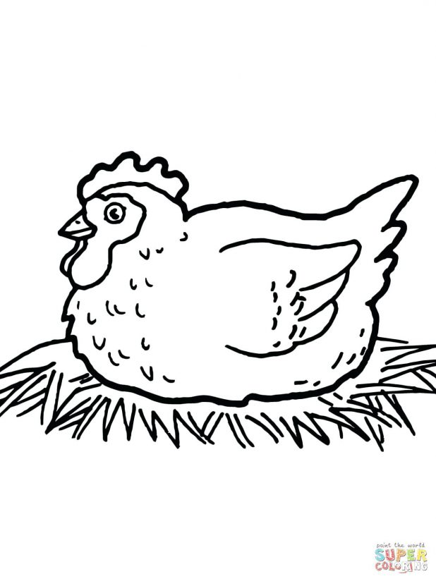 Chick Drawing