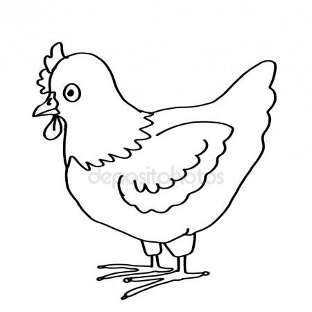 450x450 Chicken Coloring Animal Stock Photo Designartks