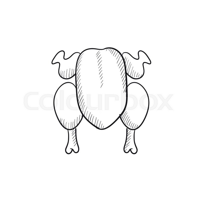 800x800 Raw Chicken Vector Sketch Icon Isolated On Background. Hand Drawn
