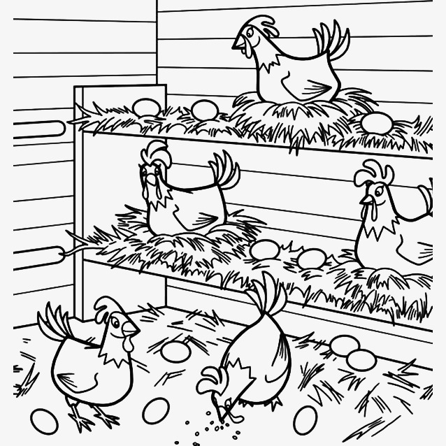 638x638 Stickfigure Coop, Cartoon Chicken Coop, Egg, Cartoon Hen Png Image