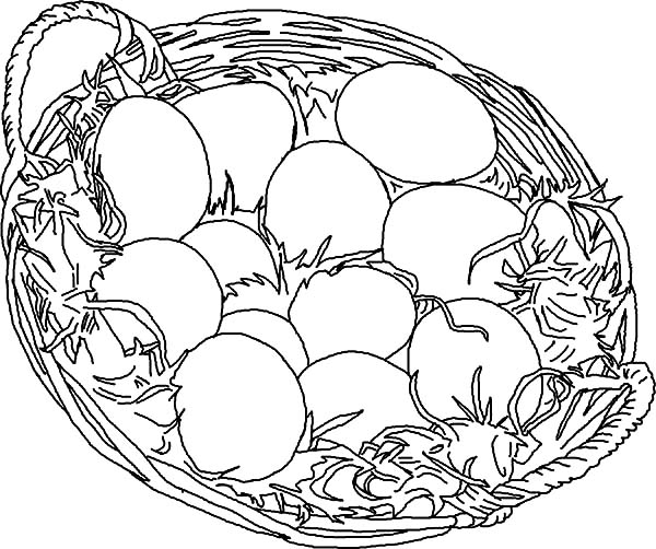 Chicken Egg Drawing At GetDrawings