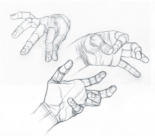 600x529 48 Best Hands Images On Anatomy Drawing, Draw