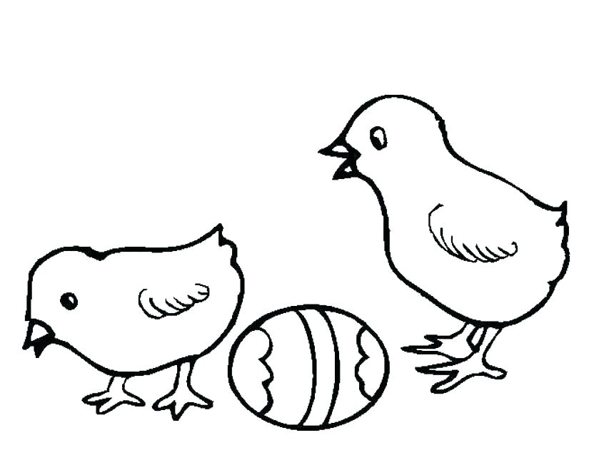 825x638 Chicks Coloring Pages Baby Chick Coloring Pages American Girl