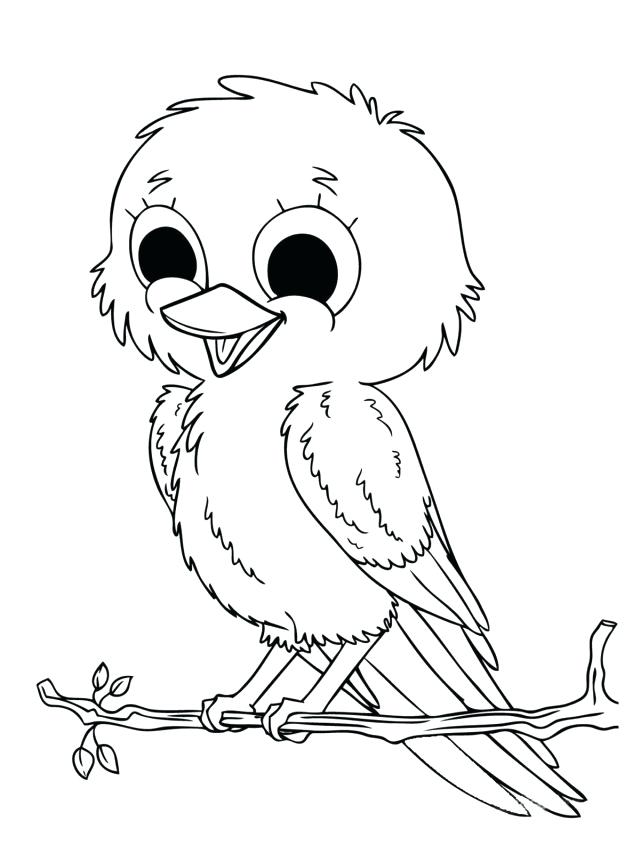 640x853 Girl Scout Coloring Pages Printable How To Draw A Chick Step Page