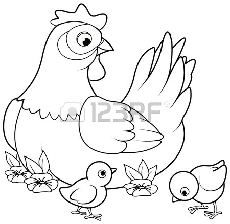 450x438 Hen And Chicks Stock Photos. Royalty Free Business Images