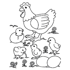 230x230 Top 10 Free Printable Cute Chicks Coloring Pages Online
