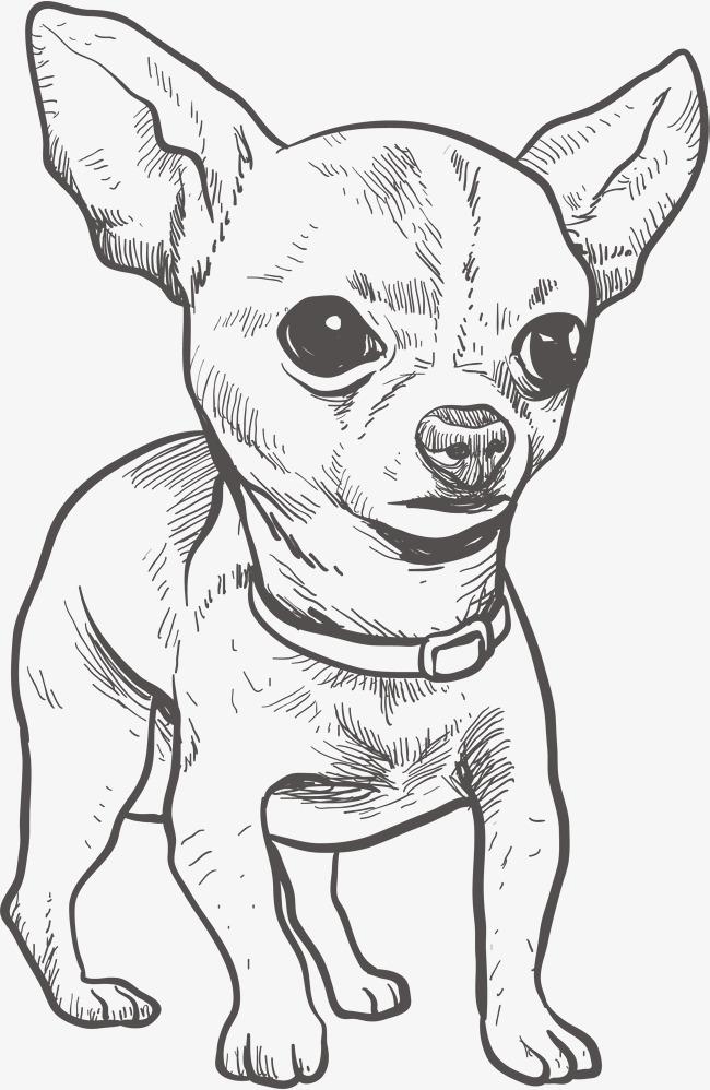 Contemporáneo Colorear Perros Chihuahua Festooning - Dibujos Para ...