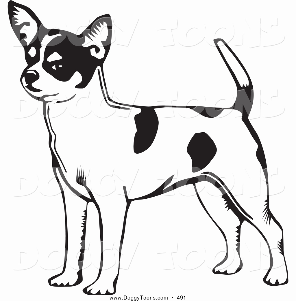 Chihuahua Drawing at GetDrawings.com | Free for personal use ...