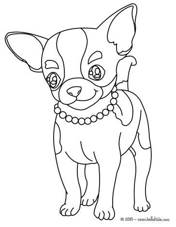 Chihuahua Line Drawing
