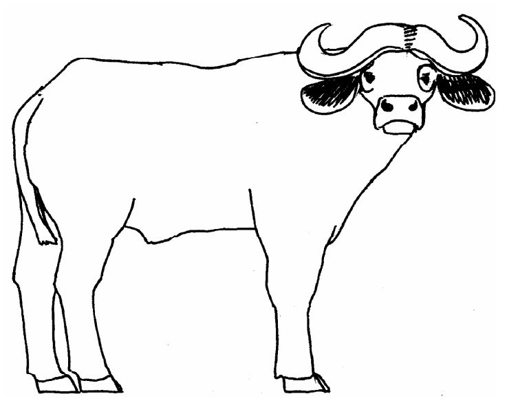 737x602 East African Alphabet Animal Stories