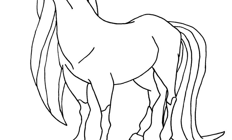 The Best Free Horseland Drawing Images Download From 17