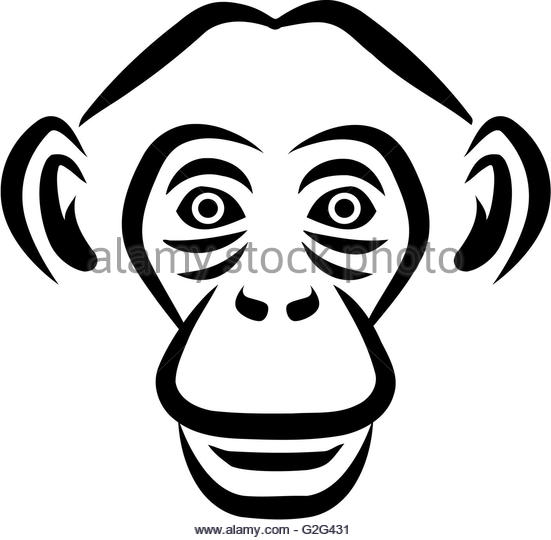 551x540 Chimpanzee Head Style Stock Photos Amp Chimpanzee Head Style Stock