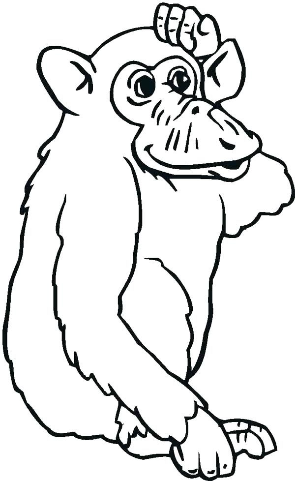 600x978 Chimpanzee Coloring Pages Baby Monkey Template Baby Chimpanzee